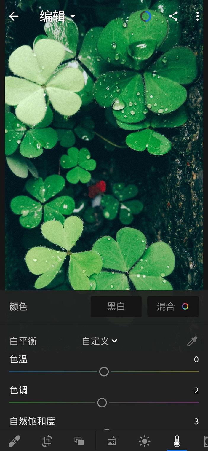 【安卓】手机版LR  专业修图必备 手机应用 第3张